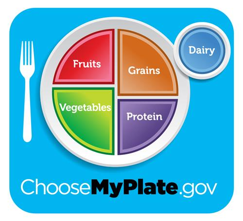 Choose my plate fruits, grains, vegetables, protein, dairy